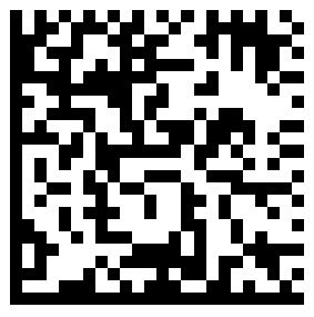 Code data matrix