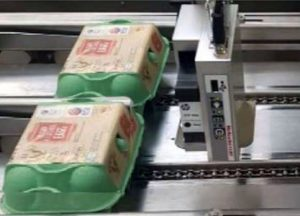 Inkjet printer coding on egg cartons